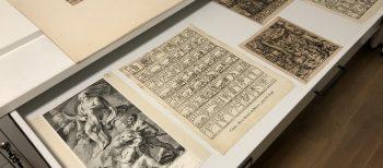 Dipòsit de la Col·lecció al Museu de Lleida