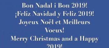 Joyeux Noël et Meilleurs Voeux pour 2019